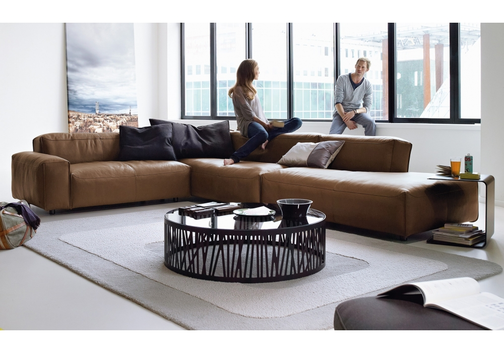 Rolf benz couch rolf benz 50 leather sofa by rolf benz Rolf benz shop
