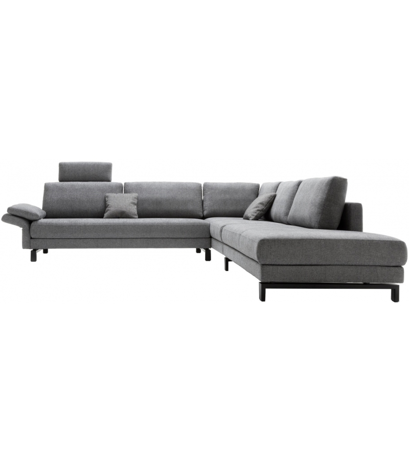 Vida Rolf Benz Sofa
