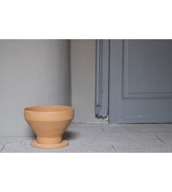 Erba InternoItaliano Vase