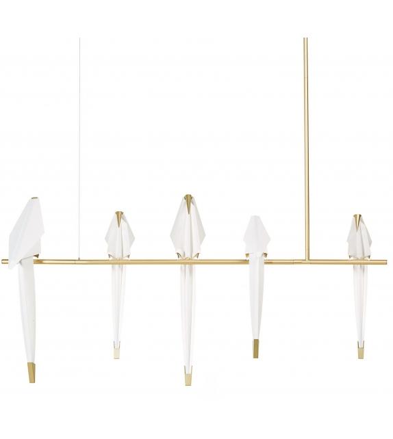 Perch Light Branch Moooi Lámpara De Suspensión
