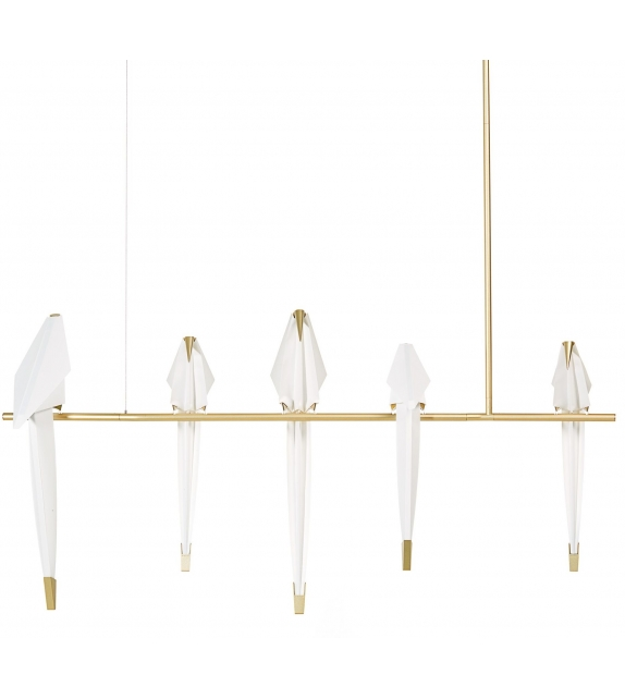 Perch Light Branch Moooi Suspension