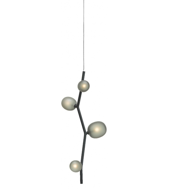 Ivy Brokis Suspension