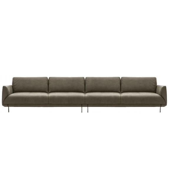 Nicoline Assago Sofa