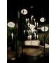 Perch Light Branch Moooi Suspension Lamp