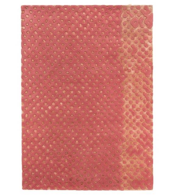 Raindrops Scarlet Splendour Rug