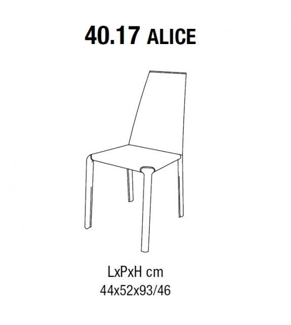 Alice Bontempi Silla