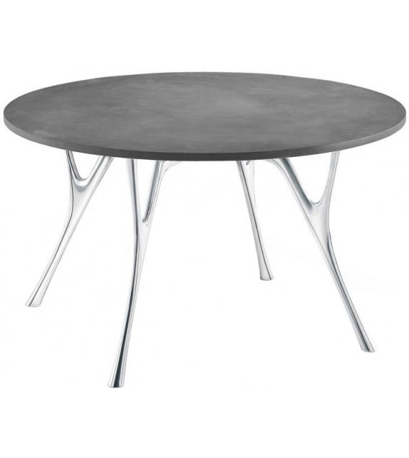 Pegaso Solid Caimi Brevetti Tisch