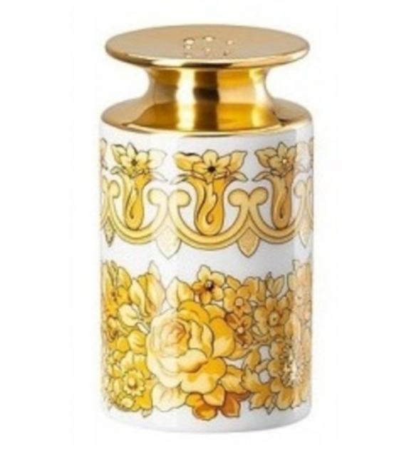 Medusa Rhapsody Rosenthal Versace Salt Shaker