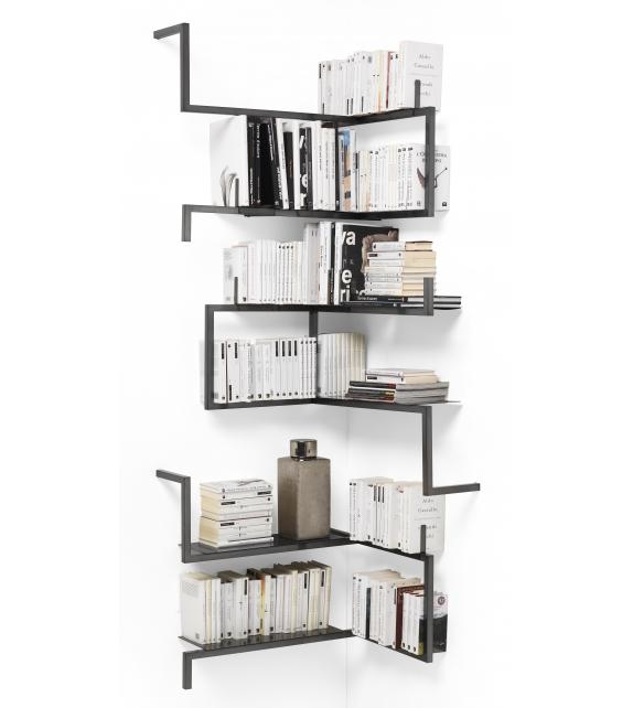 Antologia Mogg Bookshelf