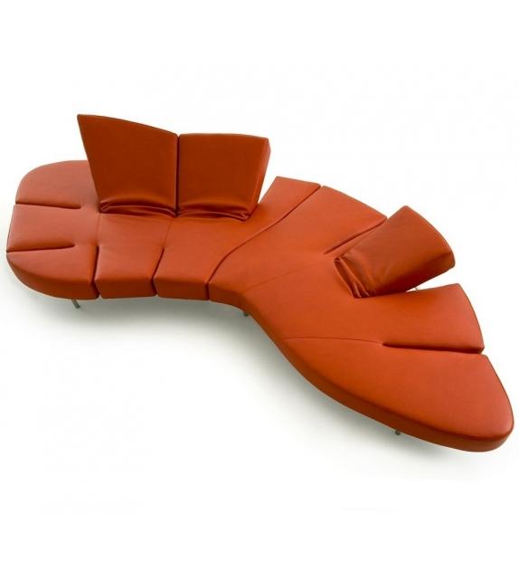 Flap Edra Sofa