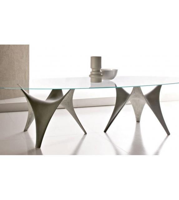 Arc Oval Table Double Base Molteni & C