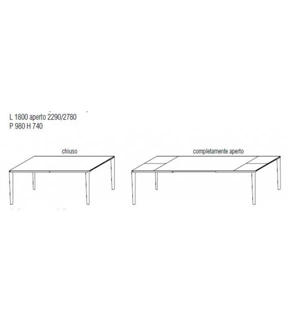 Filigree Mesa Extensible Molteni & C