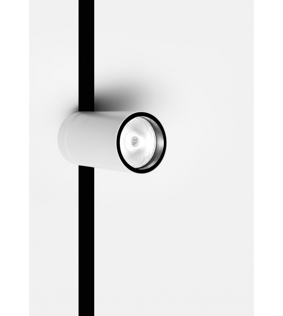Dot Frameless Davide Groppi Celing Lamp