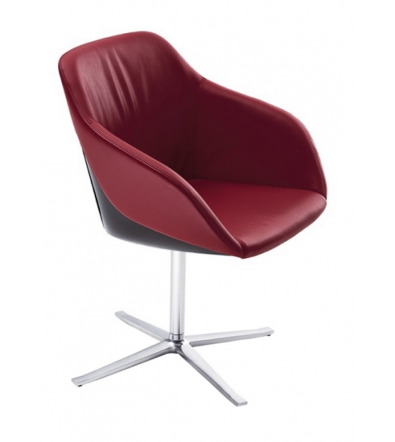 Turtle Walter Knoll Chair