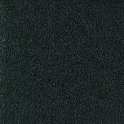 B0184 - [CA] Pelle Indigo Trip nera - T