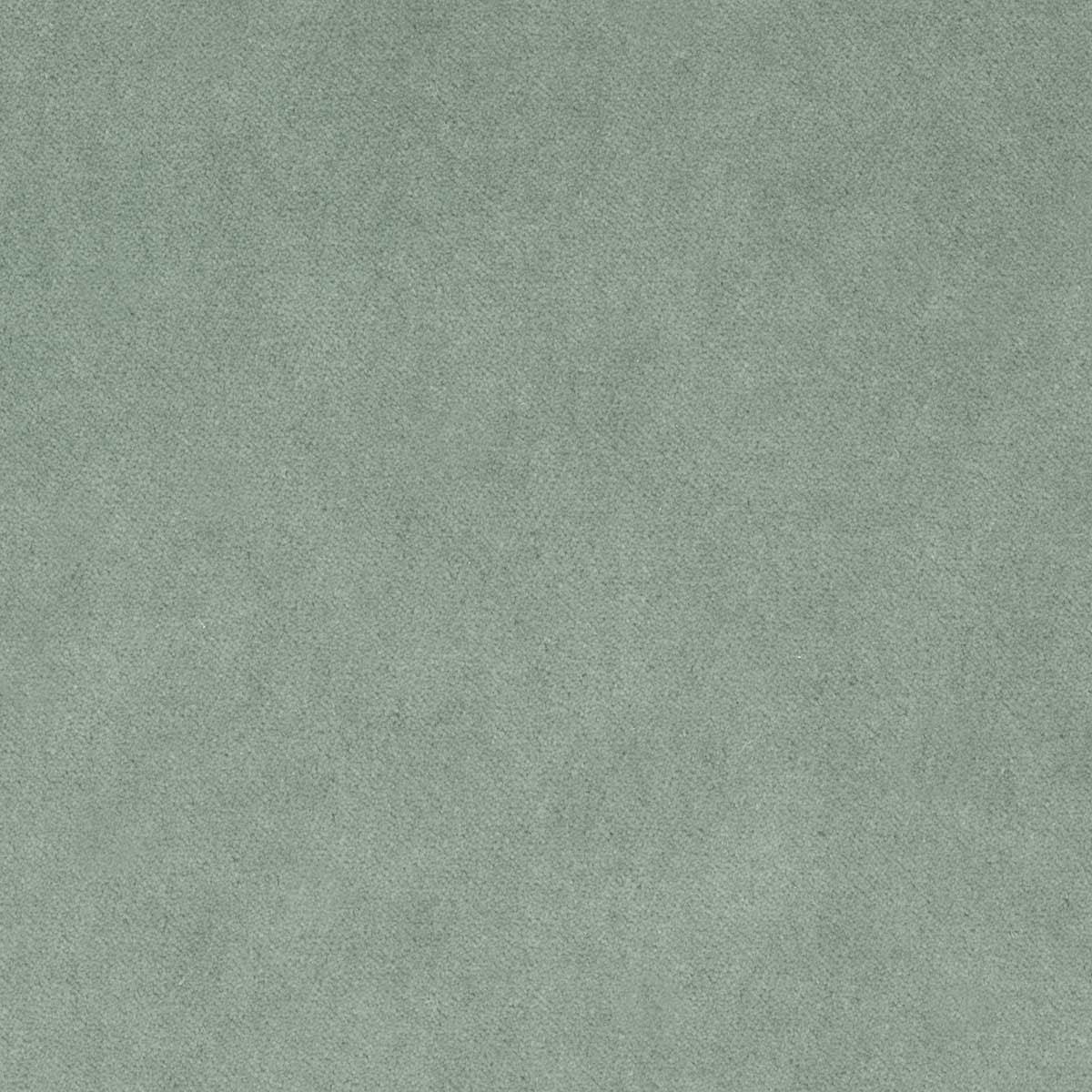 Barkley_ 27-Lichene