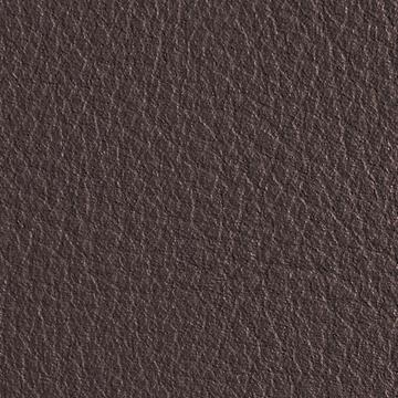 Premium Leather_ Land