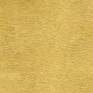 PLX-Gold 9580
