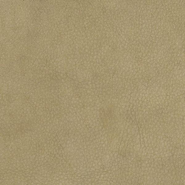 Pelle Frau® Century khaki