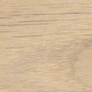 Oak - White oil