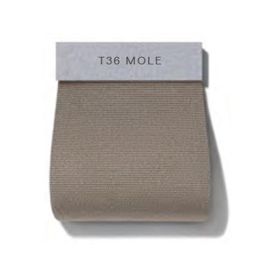 Dew_ T36 Mole