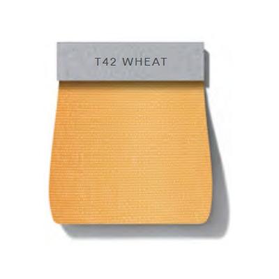Dew_ T42 Wheat