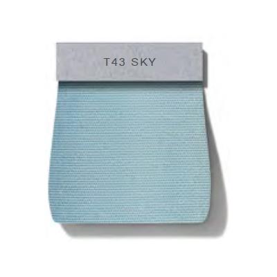 Dew_ T43 Sky
