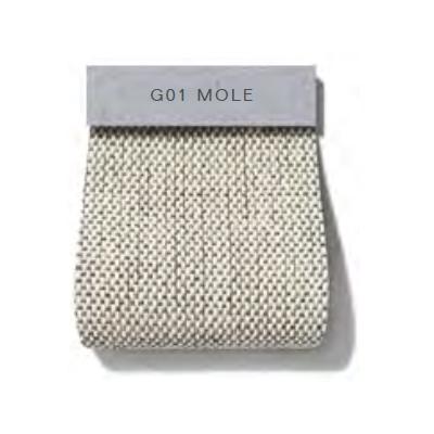 Oxford_ G01 Mole