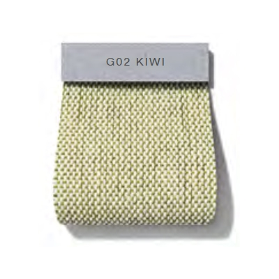 Oxford_ G02 Kiwi