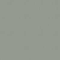 Pelle_ 9147 Geyser