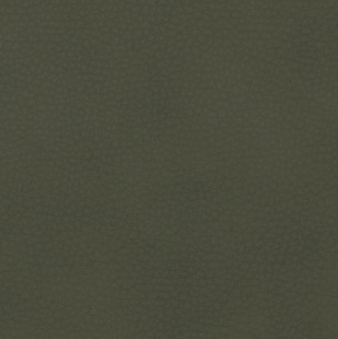 Cat. A_ Vintage Synthetic Leather_ Green 21