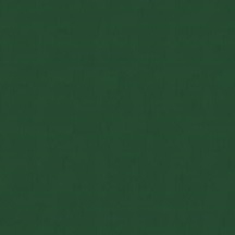 Cat. W_ Leather Wagner_ 13W003 Clover green