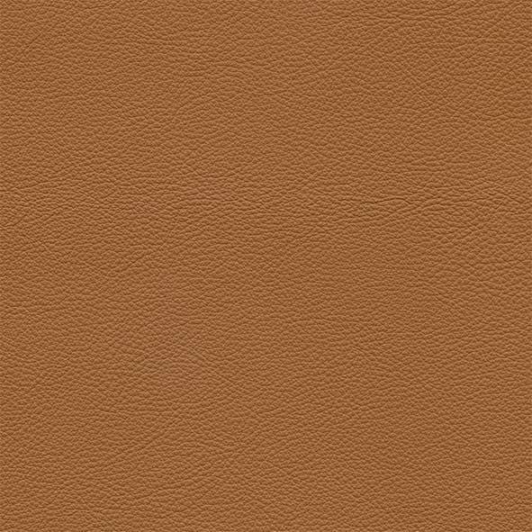 Leather_ Pelle Frau® SC_ 66 India