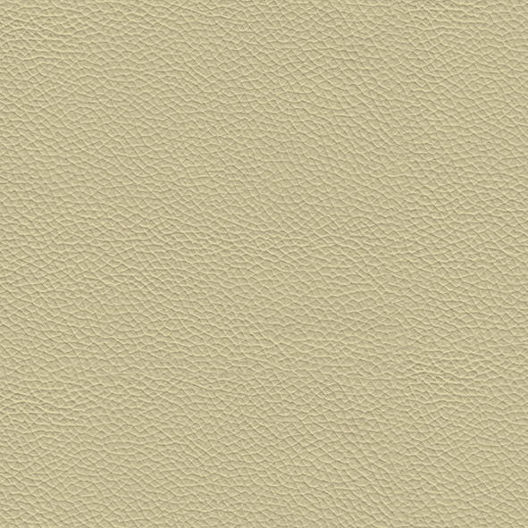 Leather_ 961 Latte