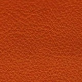 Leather_ rust