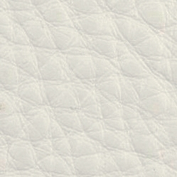 Leather_ White L_0700