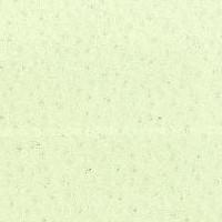 B0126 - Cuir_ Bianco Ghiaccio - T
