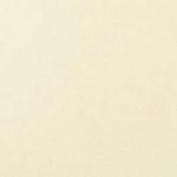 Blanco perla RAL 1013