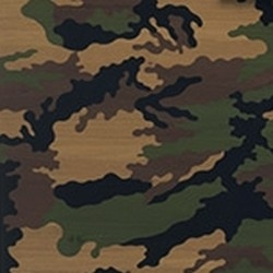 Camouflage inlay