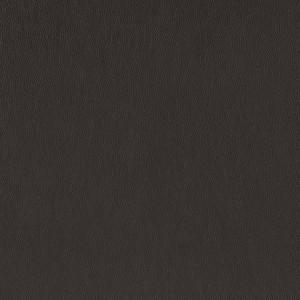 Leather_ Pandora_ PD591