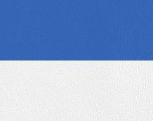 Bicolor leather white / blue