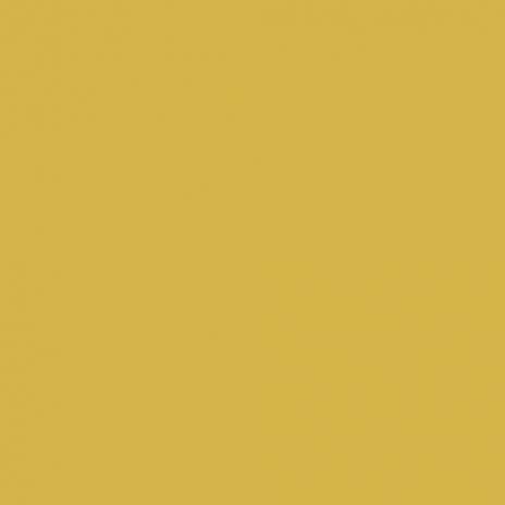 Verre gravé moutarde