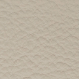 Leather_ 9103 Beige