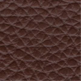 Leather_ 9119 Havana