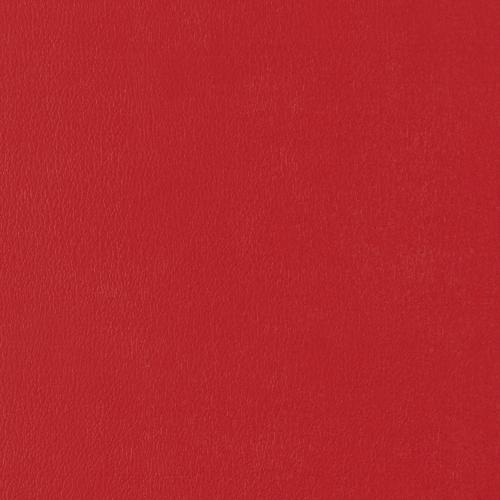Vinyl_ Rojo