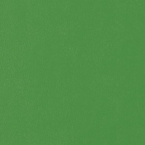 Vinyl_ Lime