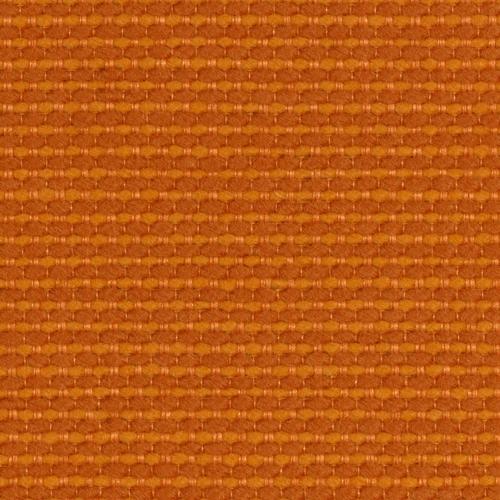 Cato_ Orange