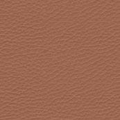 Alfa Leather_ 313