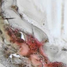 Botticelli Rubino