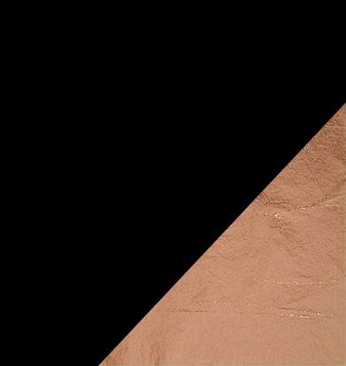 Black / Black / Copper